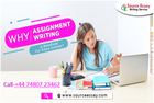 Maximize academic scores by availing the finest online assignme
