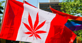 Marijuana Party Of Canada Running In Two Ontario Ridings This Ye